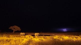 Josh Manring fine art Photographer Africa