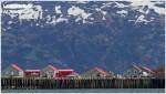 Banner Josh Manring Alaska Excursions Larsen Bay 002
