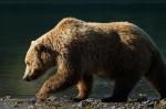 Josh Manrng- Fragmented Frontier Alaska -  Exhibit-62