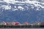 Josh Manrng- Fragmented Frontier Alaska -  Exhibit-8