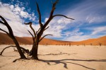 Josh Manrng-Under an African Sky- Exhibit-10