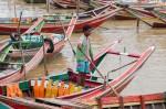 Josh Manrng- organized chaos - Southeastern Asia Exhibit-37