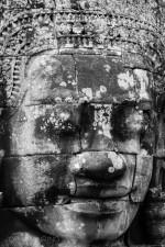 Josh Manrng- organized chaos - Southeastern Asia Exhibit-57