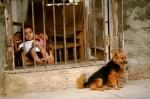 Josh Manrng- street level photographs - Cuba Exhibit-22