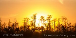 0008Josh Manring Big Cypress Burns Lake 12.24.14-IMG_0521.jpg