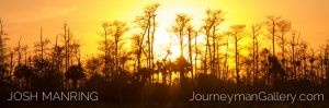 0009Josh Manring Big Cypress Burns Lake 12.24.14-IMG_0521.jpg